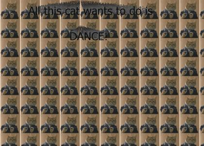 Dance cat DANCE!