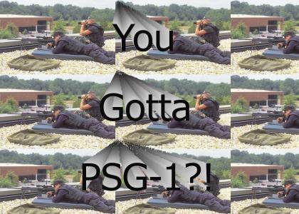 You got a PSG-1?