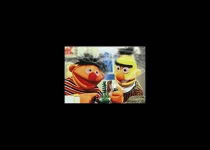 Bert and Ernie toke up