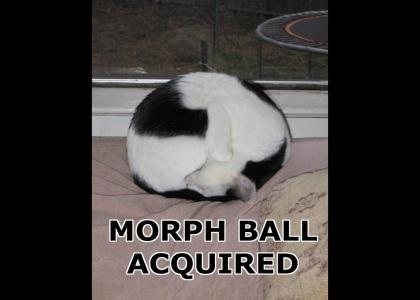 Morph Ball Acquired