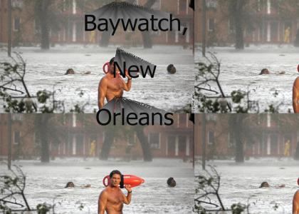 The Hoff saves New Orleans