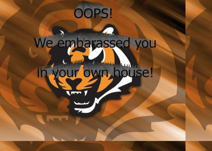 Steelers Fans!!!