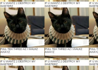 Weezer Kittie
