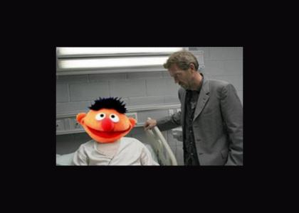 House Breaks It To Ernie Gently