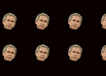 What Bush Thinks About