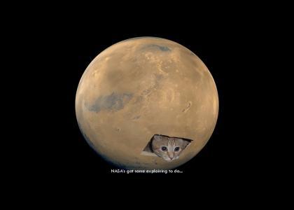 Mars Cat (updated - better sound, smaller)