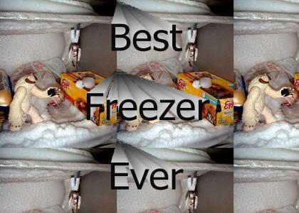 Star Wars Freezer