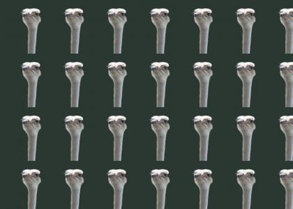 Infinite Ostriches