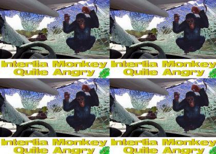 Inertia Monkey Quite Angry (YESYES)