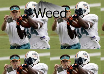 Ricky Williams has ONE strength