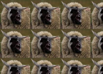 The Klingon Sheep Worf goes