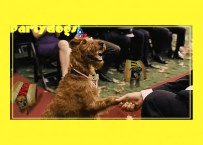 Partydogs meet the president of the U.S.A.