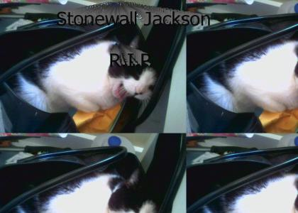 RIP Stonewall