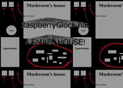 RaspberryGlock has a small house!