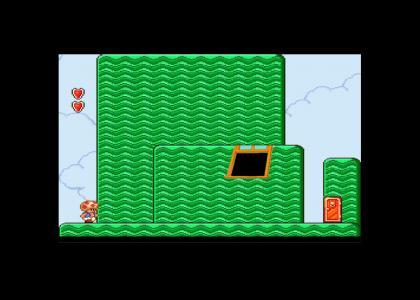Super Mario 2 special guest