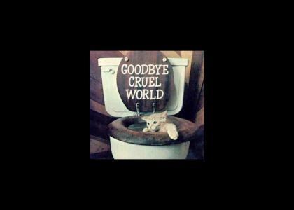 Suicidal Kitten
