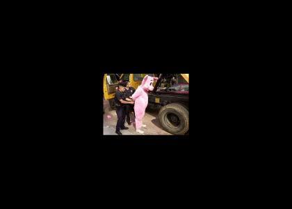 Porky Pig Arrested :(