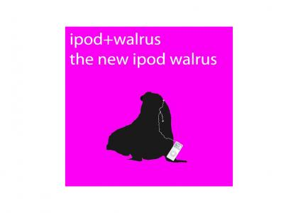 They Forgot to Put This New ipod on the Site