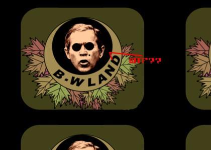 He is Bush???