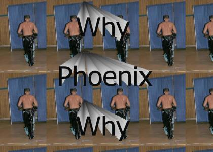 Why Phoenix Why?