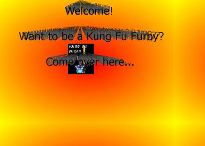 Your Beginning to Being a Kung Fu Furby