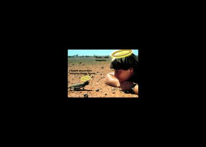 Steve Irwin & Lizard
