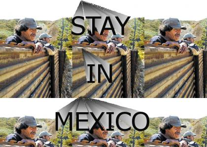 Stay in Mexico