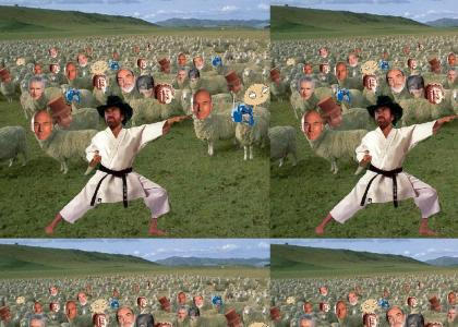 chuck norris sheepherds us all