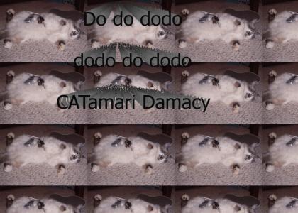 Katamari Kitty