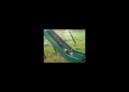 slidecat (w/100% more sonic)