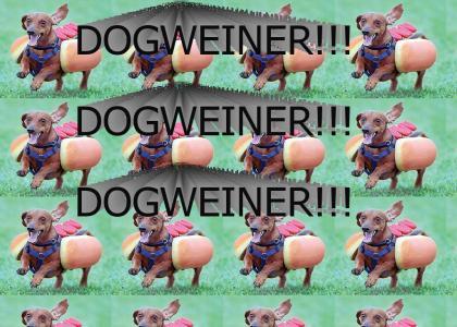 DOGWEINER!!!