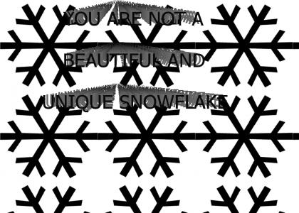 YOU ARE NOT A BEAUTIFUL AND UNIQUE SNOWFLAKE