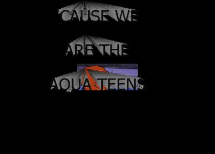 WE ARE THE AQUA TEENS