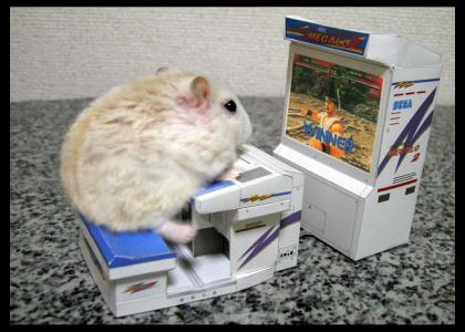 My Hamster Is Teh Pwnzor!