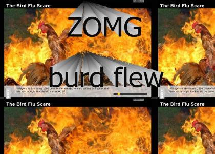 ZOMG Bird Flu