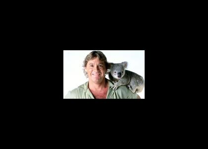 Ten Bell Salute for Steve Irwin