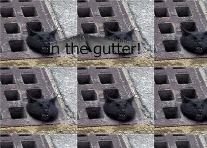 In the gutter!