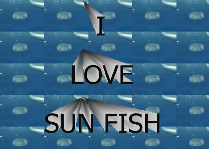 The Official Sun Fish YTMND