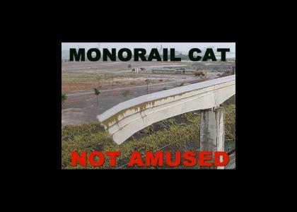 Monorail Cat Not Amused