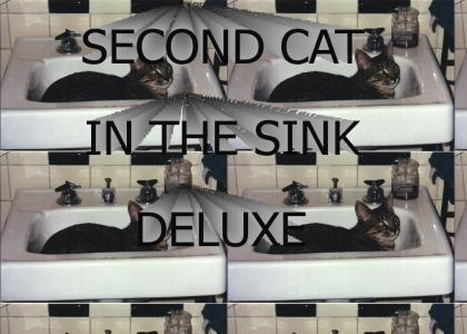 SECOND CAT IN THE SINK DELUXE