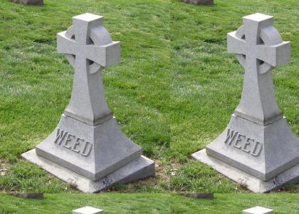 R.I.P. Weed