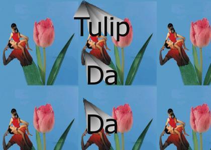 Tulip Da Da?