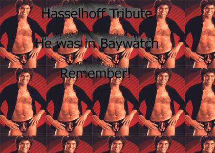tribute to Hasselhoff
