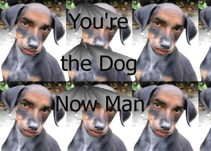 YoureTheDogNowMan