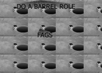 DO A FUCKING BARREL ROLE