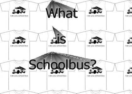 what is schoolbus?