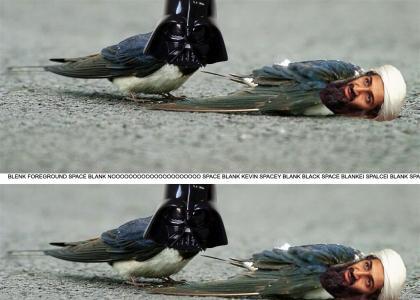 Osama- dead. Dark Vadre- mourning