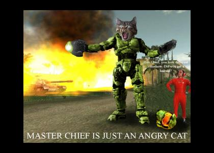 Master Chief is just an angry cat...