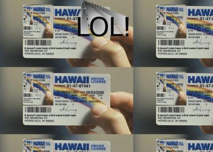 New License's new license