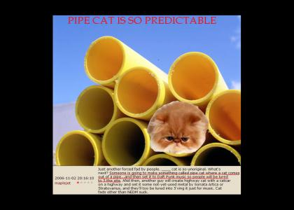 Pipe Cat is so predictable